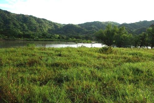 Rio Verde cerca de la comunidad de Paso de la Reina