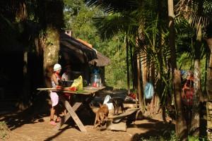 Aldea Guarani-Floresta An_anguera-Ago_2014
