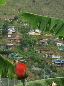 Foto, Oscar Cárdenas 4