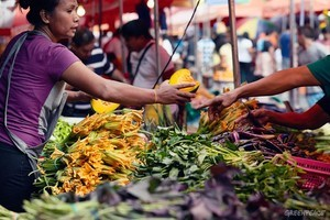 Se tiene una gran oportunidad para eliminar efectivamente una gran parte del problema climático a través de las iniciativas locales. (Foto: Greenpeace Filipinas)